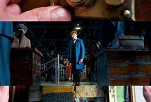 Harry Potter/Fantastic Beasts Random