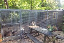 Dierenverblijf - Steigerbuis & Buiskoppelingen / Zelf een mooi verblijf maken voor uw kippen, konijnen of vogels? Bekijk dan eens de mogelijkheden die steigerbuis en buiskoppelingen u bieden. Alles eenvoudig zelf samen te stellen en op maat te bestellen.