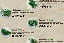 zöldek,fűszerek.