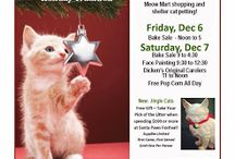 "Santa Paws Festival 2013  / Cat Care Society, 5787 W. 6th Avenue, will hold its annual ""Santa Paws Festival"" on Friday, December 6 (noon to 5), and Saturday, December 7 (9 to 4:30). New to the Festival this year are Jingle Cats created by CCS volunteers and the 'Christmas Cats Auction.' Saturday will be Family Day, with face painting and tree ornament crafting for children (9:30 to 12:30), The Original Dickens Carolers (11 to Noon), plus cat petting and free popcorn all day."""