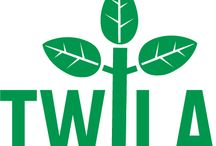 """This Week in Louisiana Agriculture / """"This Week in Louisiana Agriculture"""" is the only agricultural television program in Louisiana bringing farmers and consumers together every week."""
