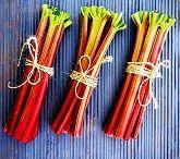 Rhubarb Festival
