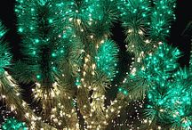 Holiday Lights / by Xpert Expo
