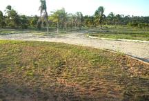 Green Club Residence (Obras Maio 2012)