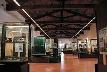 V convegno Internazionale Piccoli Musei / Il 26 e 27 settembre a #Viterbo
