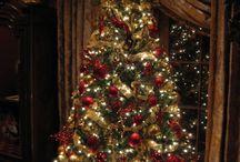Holidays / Holiday decorating, parties, gifts, etc. / by Denise Sykes