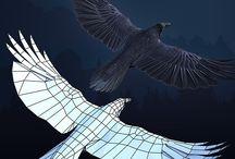 Raven Anatomy