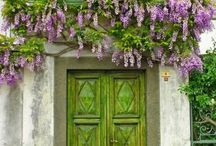 Curb Appeal / by Designed On Sunshine