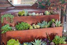 ogrody małe i duże