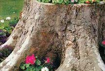 Gardening/Κηπουρική / Ideas to decorate your garden / Ιδέες για την διακόσμηση του κήπου σας