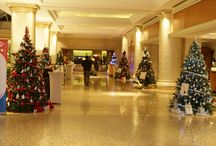 Christmas Tree Competition Cocktail Party / by Hyatt Regency Belgrade