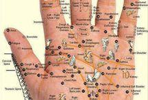 acupuncturepoint-locator.com