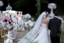 Perfect Wedding at Edward Whittal Garden