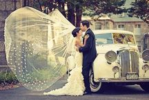 Wedding Ideas / by Stephanie Adams