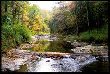 creeks and streams equal fun