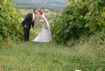 Bluemont Vineyard Weddings / by Holly Heider Chapple Flowers Ltd.