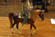 breyer horses / model horses and tack. Posed in natural scenes / by Lori Bethell