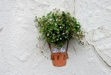 Home garden / Ideas for container planting