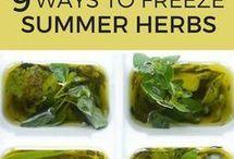 Herb Garden, how to..