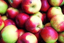 I Love Fall & Autumn Food / Fall harvest deliciousness!  Apples, pumpkins, fall baked goods, squash, fall comfort food, and more!