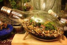 Terrariums / We love these creative and beautiful gardens in a container :)