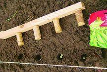 идеи огород