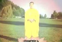 Meditatii Qigong