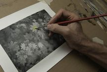 Hand Colored Photographs