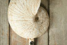 Beach and coastal decor / Casual beach decor / by Margaret Moss