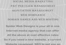 Spider Web Designz / Wherever you are based in the world, if you are looking for a strong and successful internet profile, then having Spider Web Designz looking after your website design and development and managing your internet marketing services, you will have the total web solution your company needs.