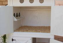 My Dream Chicken Coop :)