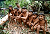 Enawené-Nawé / www.xapiri.com curated board in reference to the Enawené-Nawé indigenous people of Brazil