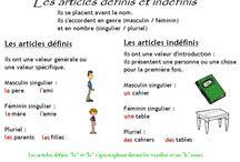 grammaire prima media