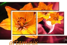 Flowers / I ♥ painting flowers and nature