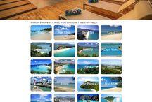 Property Websites