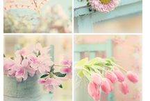 shabby chic paint colours