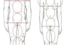 human proportion, dimentions and scale