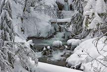 Winter / by Theresa Johnson