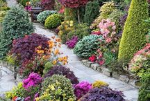 Tuin indelingen