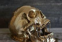 두개골 활요ㅇ