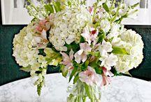 Kwiaty do domu