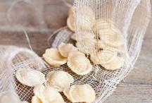 Italy / Salumeria Bianco. Tasting stories, since 1936.