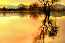 COLOR: Of the Sun / by Cindy Carlson