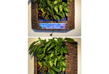 Living tableau .                        Aquaponic and hydroponice vertical living art www.edensfuture.com