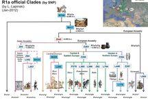 Haplogroup R1a
