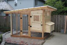 Outdoor Home Projects