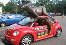 Around Moosejaw! / Pictures from in & around #MoosejawPizza in #WisconsinDells. #Wisconsin  #DellsMoosejaw  #Dells Brewing
