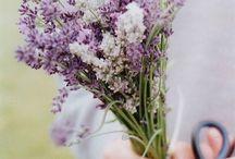 Wedding Inspiration / April 2016!