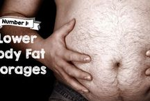 Fat burning and testosterone