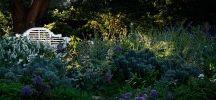 Garden & venue inspiration
